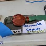 Devonshire Preschool Heritage Exhibition Bermuda, May 22 2015-43