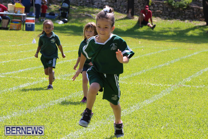 Devonshire-Preschool-Sports-Bermuda-May-22-2015-10