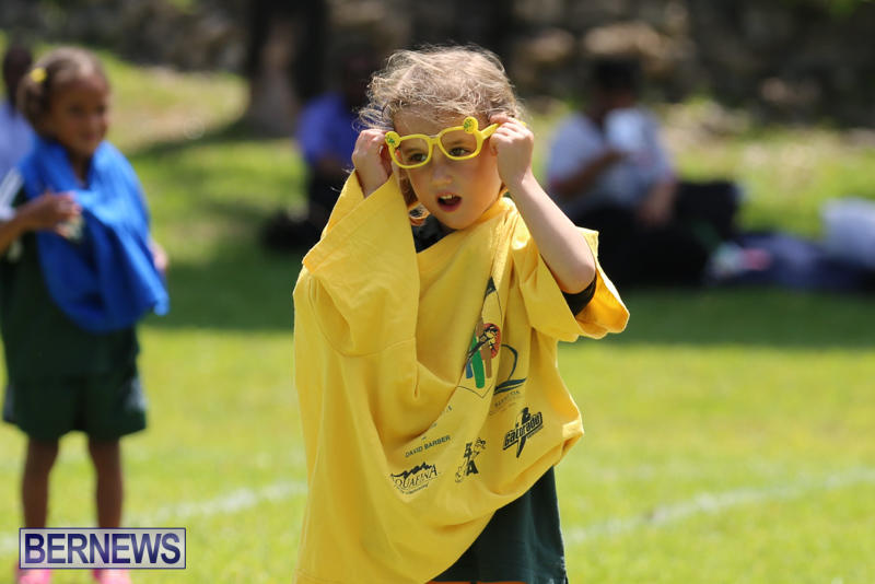 Devonshire-Preschool-Sports-Bermuda-May-22-2015-101