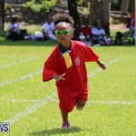 Devonshire Preschool Sports Bermuda, May 22 2015-104