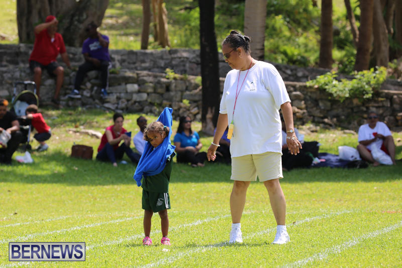 Devonshire-Preschool-Sports-Bermuda-May-22-2015-106