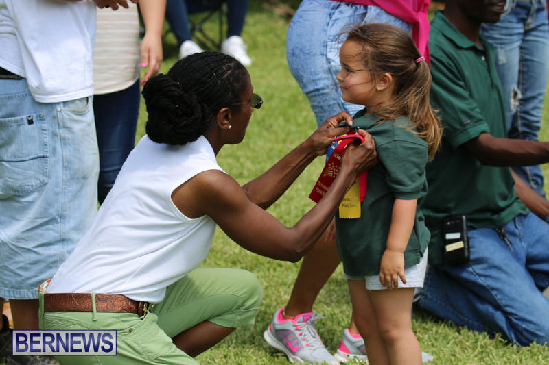 Devonshire-Preschool-Sports-Bermuda-May-22-2015-113