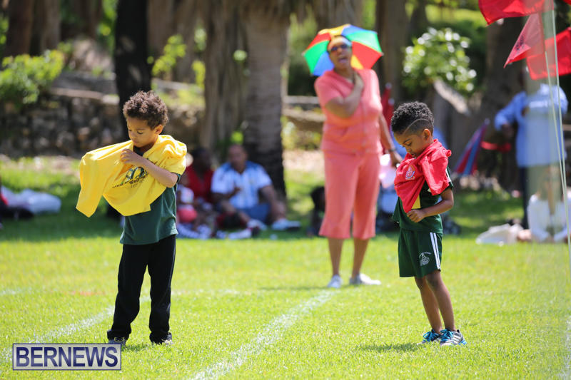 Devonshire-Preschool-Sports-Bermuda-May-22-2015-119