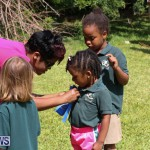Devonshire Preschool Sports Bermuda, May 22 2015-12