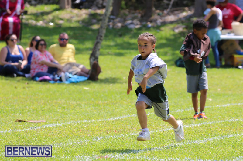Devonshire-Preschool-Sports-Bermuda-May-22-2015-123