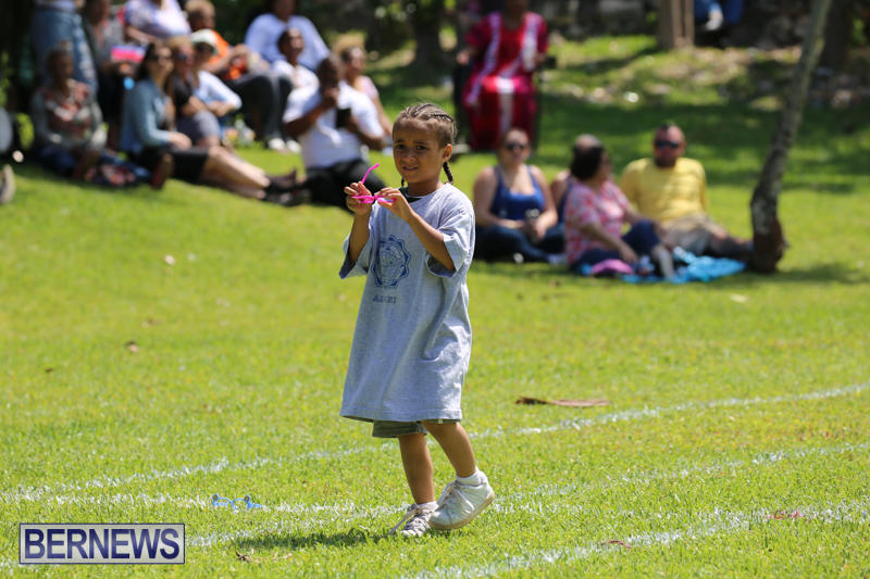Devonshire-Preschool-Sports-Bermuda-May-22-2015-124