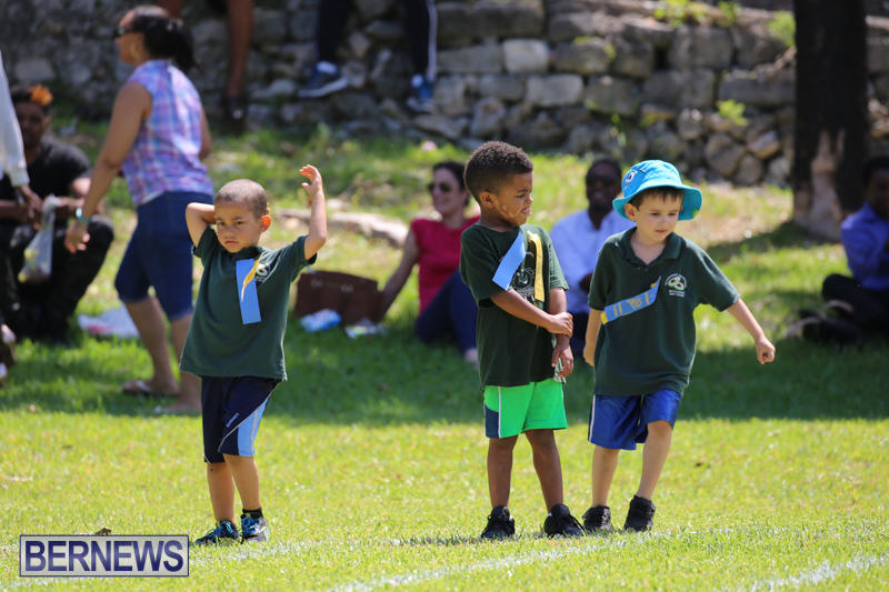 Devonshire-Preschool-Sports-Bermuda-May-22-2015-127