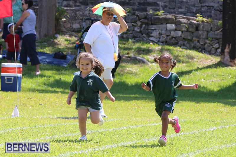 Devonshire-Preschool-Sports-Bermuda-May-22-2015-13