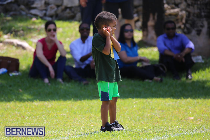 Devonshire-Preschool-Sports-Bermuda-May-22-2015-133