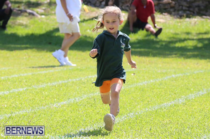 Devonshire-Preschool-Sports-Bermuda-May-22-2015-14