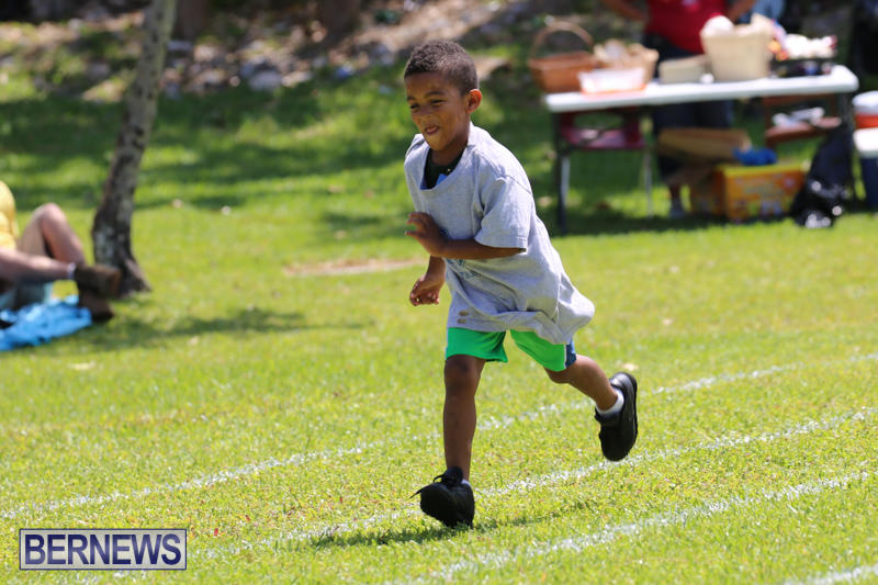 Devonshire-Preschool-Sports-Bermuda-May-22-2015-144