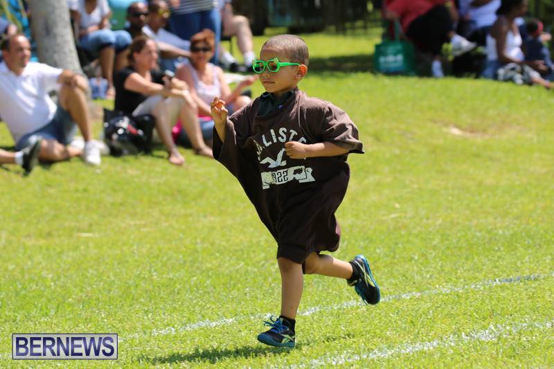 Devonshire-Preschool-Sports-Bermuda-May-22-2015-146