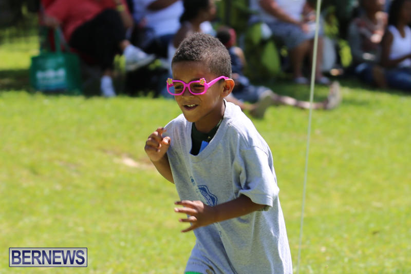 Devonshire-Preschool-Sports-Bermuda-May-22-2015-148