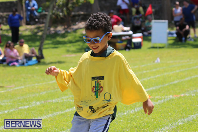 Devonshire-Preschool-Sports-Bermuda-May-22-2015-149