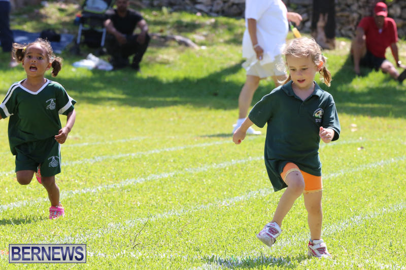 Devonshire-Preschool-Sports-Bermuda-May-22-2015-15