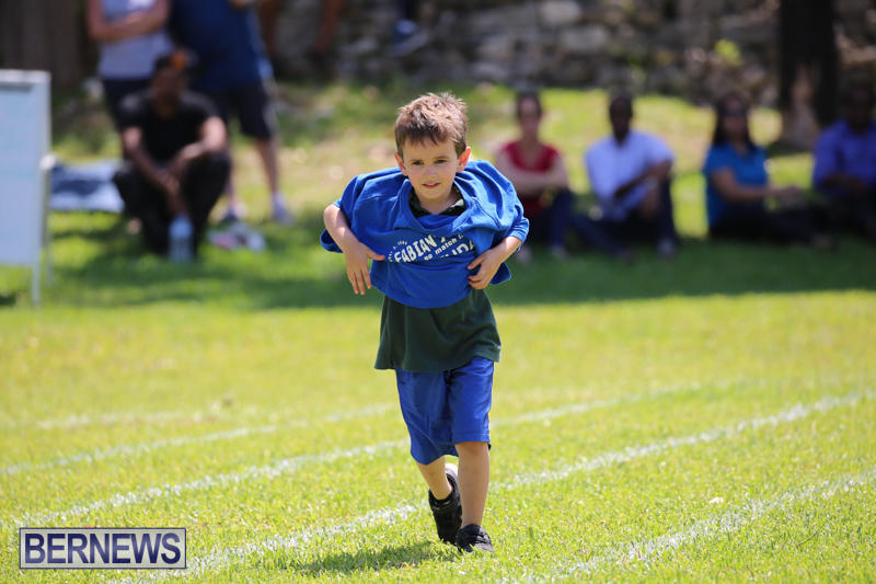 Devonshire-Preschool-Sports-Bermuda-May-22-2015-151