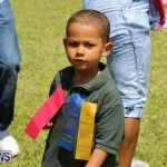 Devonshire Preschool Sports Bermuda, May 22 2015-158