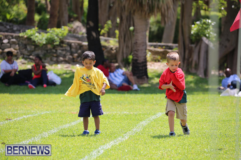 Devonshire-Preschool-Sports-Bermuda-May-22-2015-163