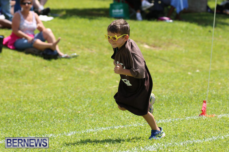 Devonshire-Preschool-Sports-Bermuda-May-22-2015-169