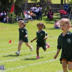 Devonshire Preschool Sports Bermuda, May 22 2015-17
