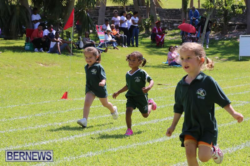 Devonshire-Preschool-Sports-Bermuda-May-22-2015-17