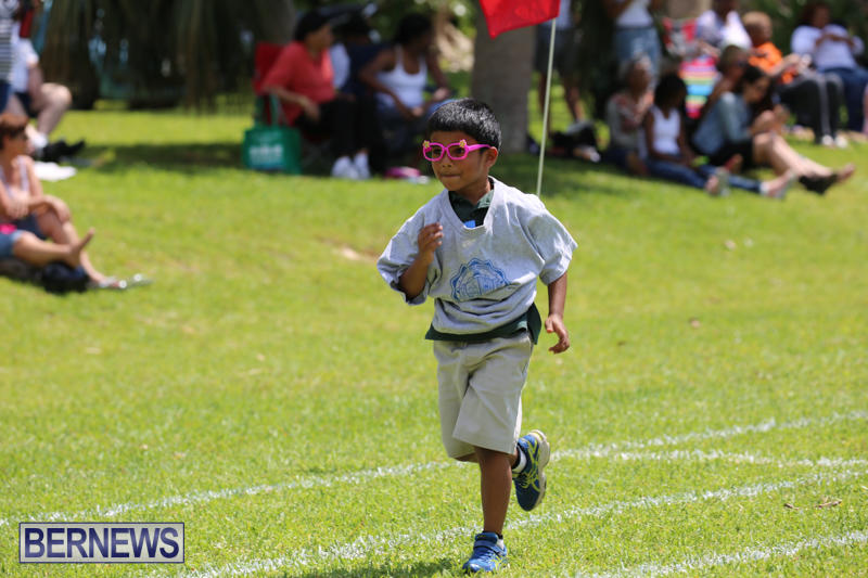 Devonshire-Preschool-Sports-Bermuda-May-22-2015-179