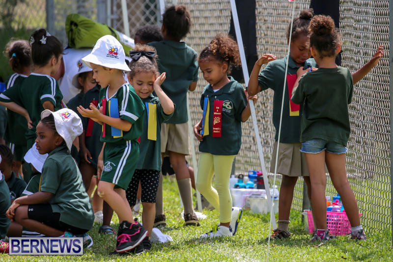 Devonshire-Preschool-Sports-Bermuda-May-22-2015-184
