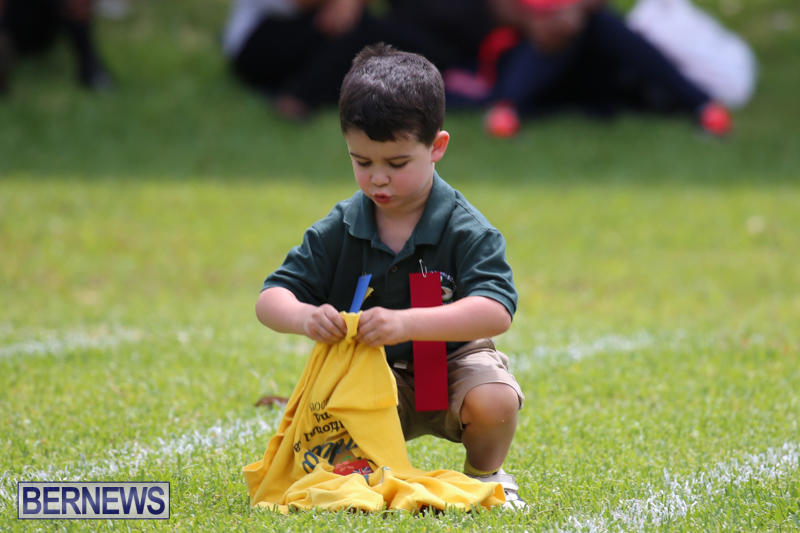 Devonshire-Preschool-Sports-Bermuda-May-22-2015-186