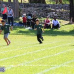 Devonshire Preschool Sports Bermuda, May 22 2015-19