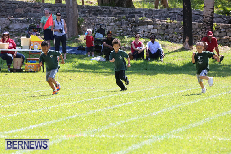 Devonshire-Preschool-Sports-Bermuda-May-22-2015-19