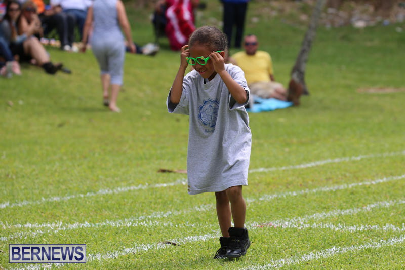 Devonshire-Preschool-Sports-Bermuda-May-22-2015-192