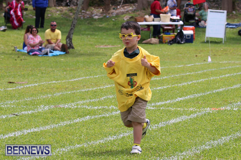 Devonshire-Preschool-Sports-Bermuda-May-22-2015-196