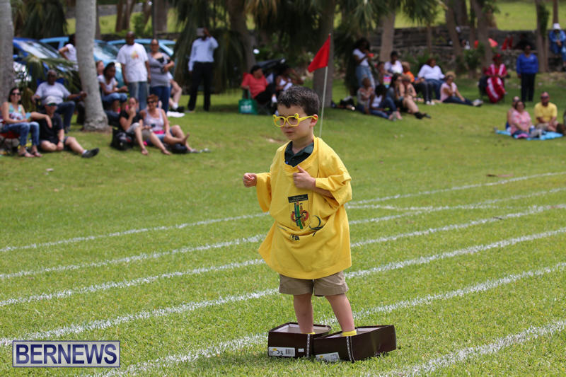 Devonshire-Preschool-Sports-Bermuda-May-22-2015-197