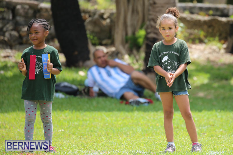 Devonshire-Preschool-Sports-Bermuda-May-22-2015-199