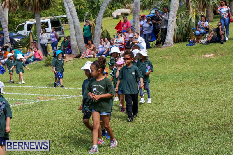 Devonshire-Preschool-Sports-Bermuda-May-22-2015-2