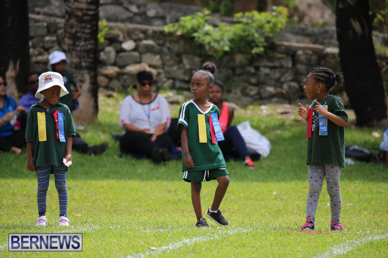 Devonshire-Preschool-Sports-Bermuda-May-22-2015-203