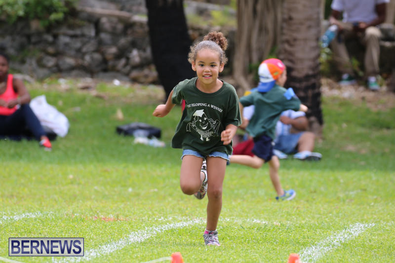 Devonshire-Preschool-Sports-Bermuda-May-22-2015-206