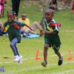 Devonshire Preschool Sports Bermuda, May 22 2015-210