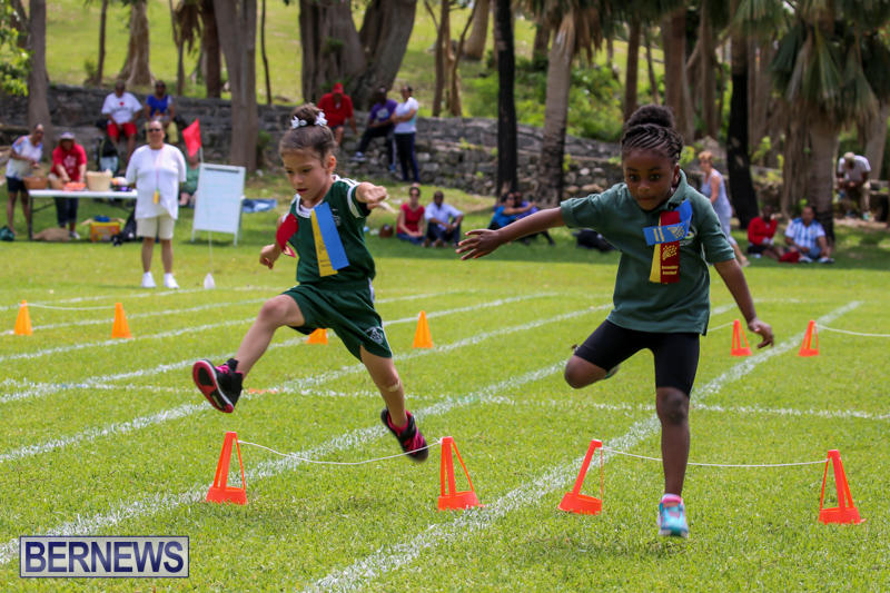 Devonshire-Preschool-Sports-Bermuda-May-22-2015-214