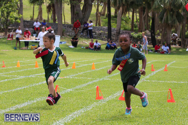 Devonshire-Preschool-Sports-Bermuda-May-22-2015-215