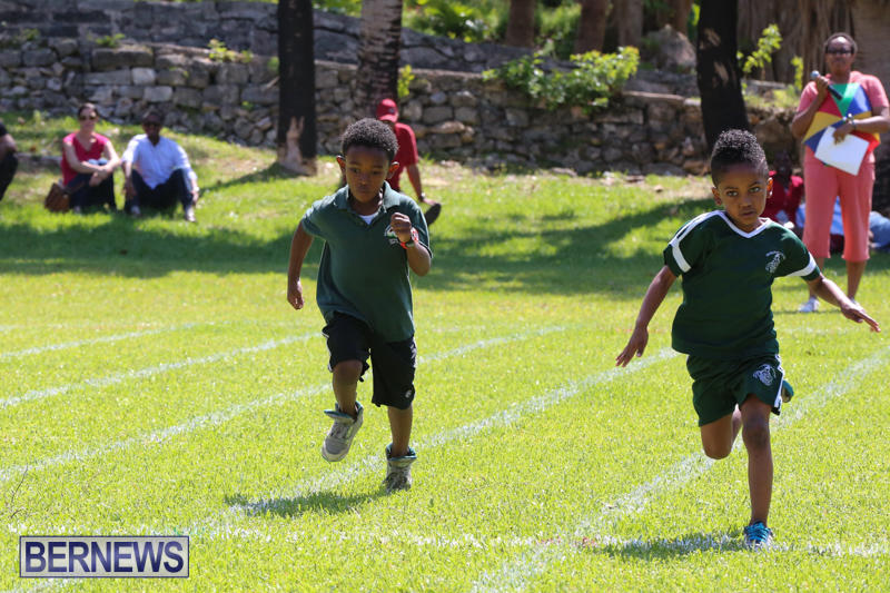 Devonshire-Preschool-Sports-Bermuda-May-22-2015-22