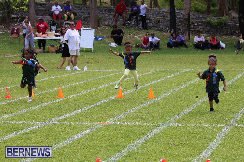 Devonshire-Preschool-Sports-Bermuda-May-22-2015-221