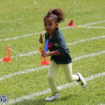 Devonshire Preschool Sports Bermuda, May 22 2015-224