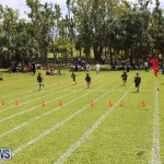 Devonshire Preschool Sports Bermuda, May 22 2015-227
