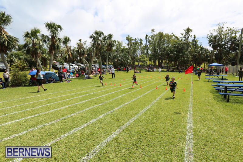 Devonshire-Preschool-Sports-Bermuda-May-22-2015-228