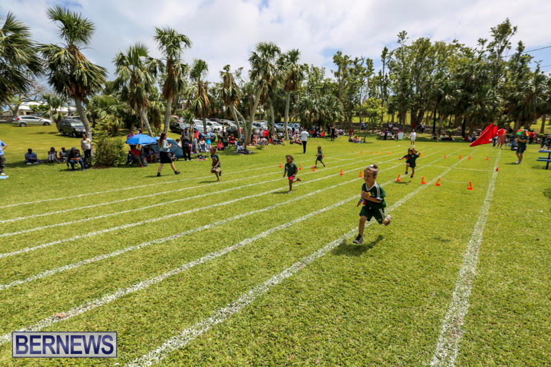 Devonshire-Preschool-Sports-Bermuda-May-22-2015-229
