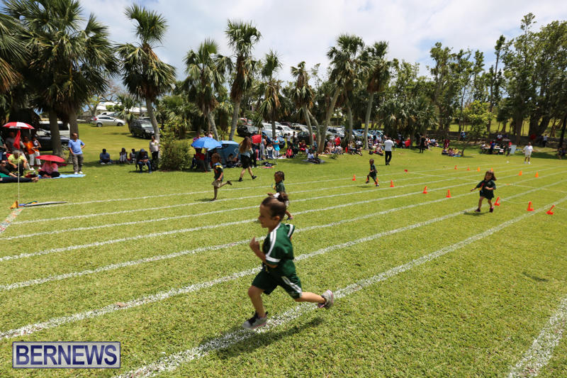 Devonshire-Preschool-Sports-Bermuda-May-22-2015-230
