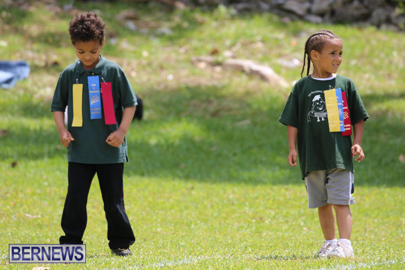 Devonshire-Preschool-Sports-Bermuda-May-22-2015-233