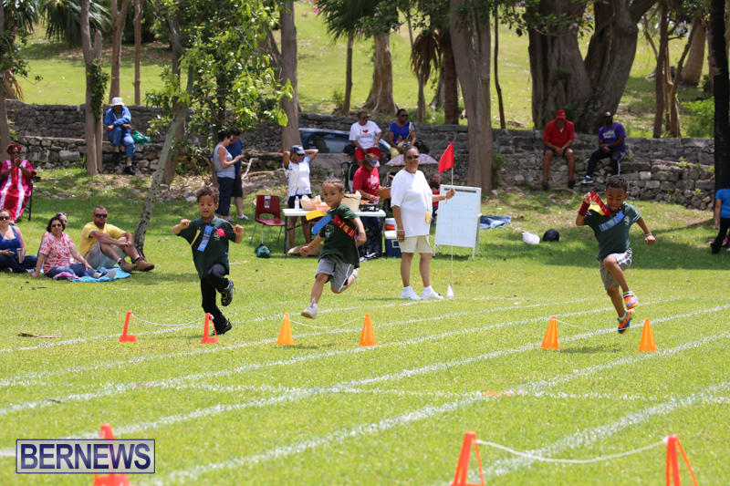 Devonshire-Preschool-Sports-Bermuda-May-22-2015-235