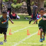 Devonshire Preschool Sports Bermuda, May 22 2015-237